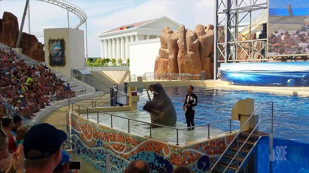 Аквапарк в Сиде отзывы