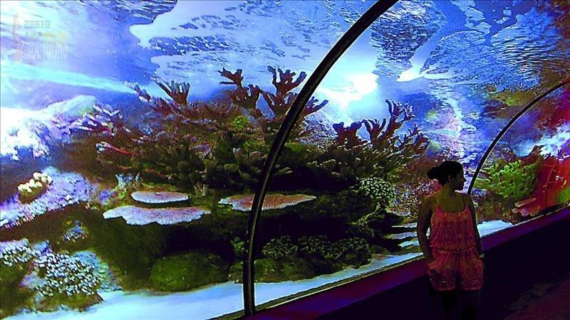 Okeanariumas iš Side
