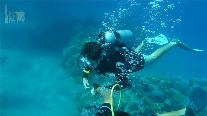 Alanya diving from Side